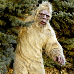 The Untold Truth of 'Finding Bigfoot'