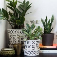 10 Ideas for Decorating Your Work Office