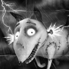 Lightning Is Explained In Tim Burton's Frankenweenie