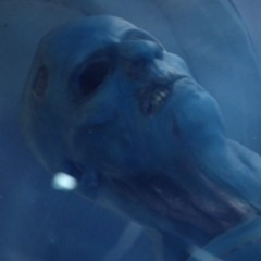 'Agents of SHIELD's Mysterious Blue Alien Species Revealed