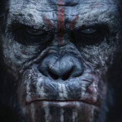 An Update on 'Planet of the Apes 3' and the Franchise's Future