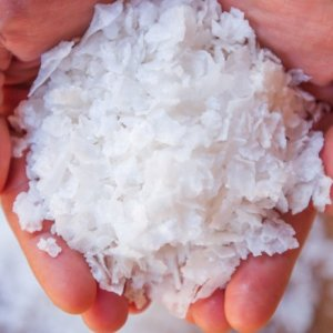 Arkansas, Rice to meet in 2021 | Tacoma News Tribune